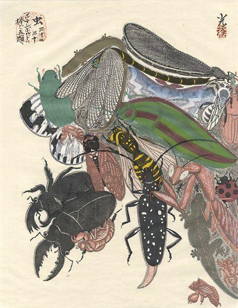 """Dedicated to Arcimboldo"" series / Insects by Tsuruya Kokei | 〈アルチンボルドに捧ぐ五題〉の内 虫 弦屋光溪"