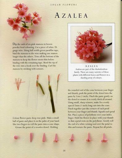 sugar flowers - AZALEA - Álbumes web de Picasa