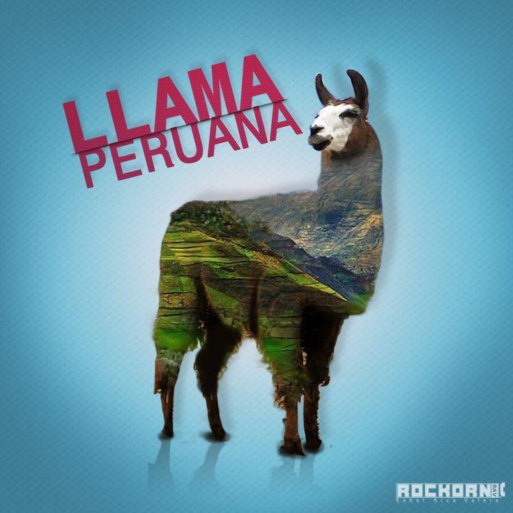 Llama Peruana #peru #llama #animal #cultura #culture #design #photoshopcc #photoshop #diseño #art #arte #rav #rockorn #like #random #llamaperuana #sierra  #peruvian #perù