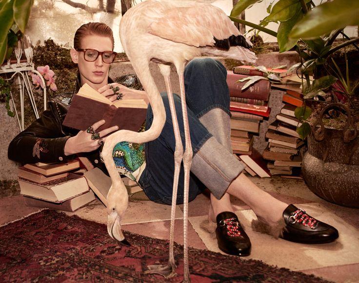http://www.thefashionisto.com/wp-content/uploads/2016/03/Gucci-2016-Pre-Fall-Campaign-001.jpg
