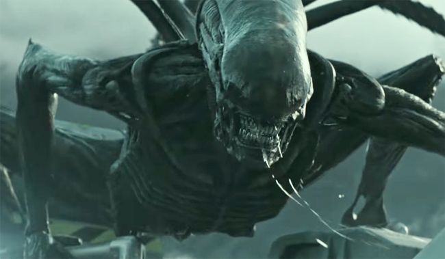 [WATCH] The Xenomorph Attack In The Latest 'Alien: Covenant' Trailer