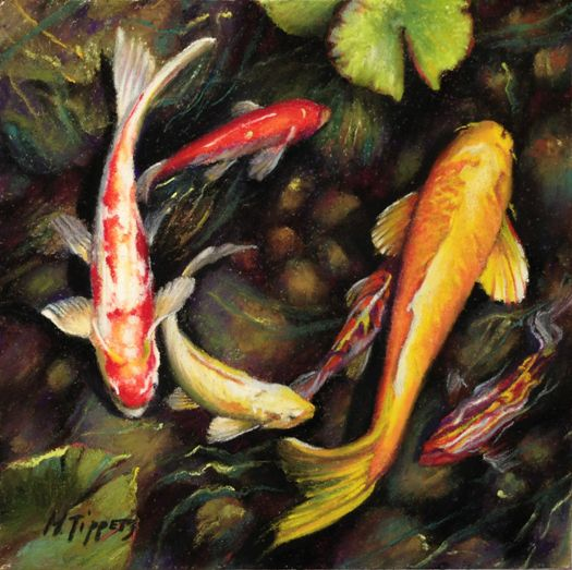75 best images about japanese coy fish references on pinterest for Japanese koi painting