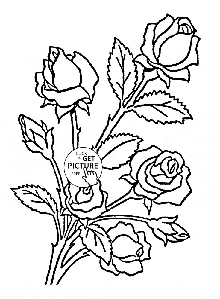 29 Best Flowers Coloring Pages Images On Pinterest