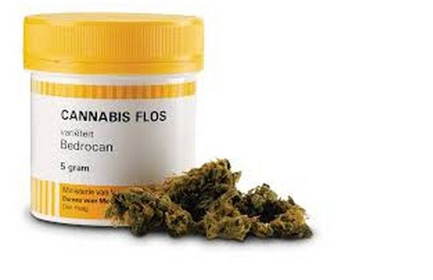 malata di sclerosi multipla guarisce grazie a Bedrocan: la cannabis terapeutica