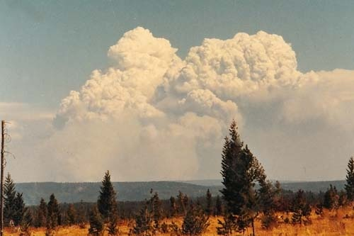 Pyrocumulonimbus formed by wild fire - Yellowstone Fires (1988)