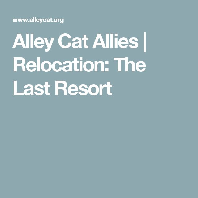 Alley Cat Allies | Relocation: The Last Resort