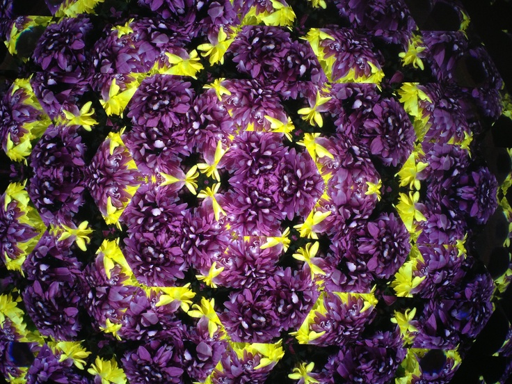 Looking at the flowers through the kaleidoscope!
