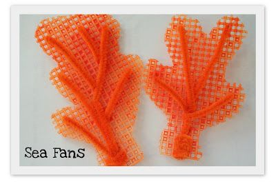 Making Sea Fans and Coral Reefs | Homeschool Creations Blog