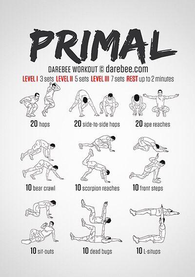 Mejores 79 im genes de workout en pinterest rutinas de for Gimnasio 46022