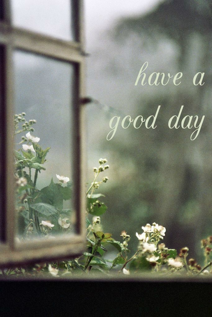 have a good day. Open window to the nature