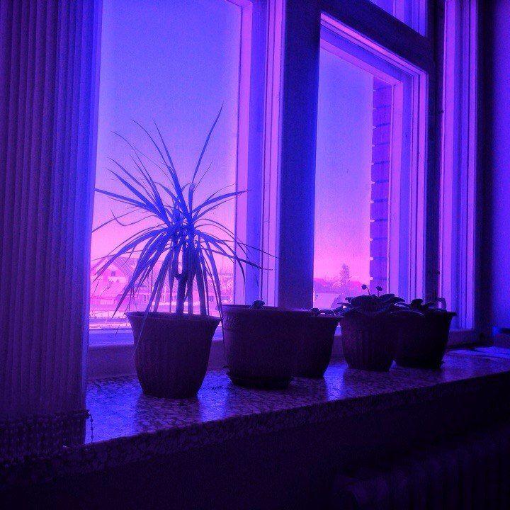 Pinterest // @사스키야 로레나 - Moon || aesthetic | Roxo neon ...