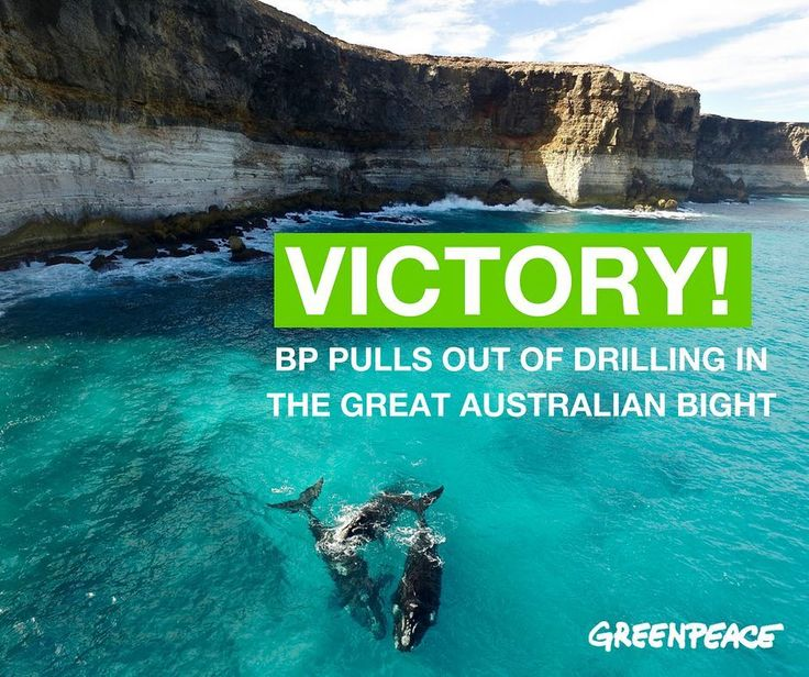 VICTORY! BP ditches plans to drill for oil in the #greataustralianbight.  What a win for #peoplepower. Congratulations to all the amazing people that worked hard to make this happen. It could not have been achieved without your hard work and dedication. Together we are #unstoppable  @wilderness_aus @greataustralianbightalliance