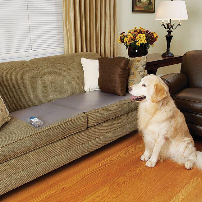 "ScatMat®- Couch size 12""x60"" | SKM-C472 | Pet Proofing Sprays, Barriers, & Mats | PetSafe"