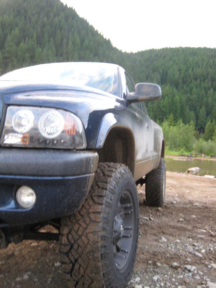 Bdakota 2003 Dodge Dakota Regular Cab & Chassis 33367514002_original