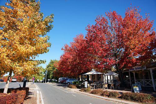 Stirling, Adelaide Hills - South Australia