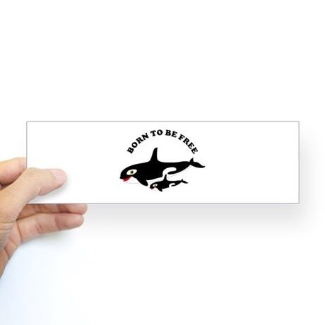 Free the whales Bumper Sticker