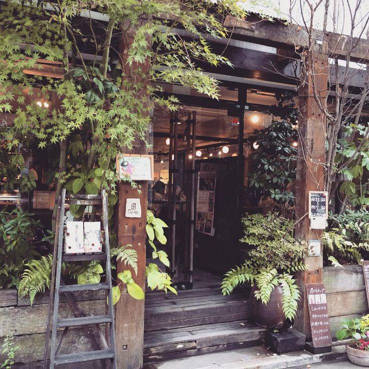 九州の福岡は人気観光地。オシャレなショップや飲食店が立ち並び、ちょっとコーヒーブレイクしたい時にどのお店に入ろうかと悩んでしまいますね。今回は、まったり過ごせる美味しいカフェ「CAFE POTTERS(カフェポッターズ)」「DAYLIGHT KITCHEN organic(デイライトキッチンオーガニック)」「CORDUROY cafe(コーデュロイカフェ)」「ROBERT'S COFFEE(ロバーツコーヒー)」「cafeゆう」をご紹介します。