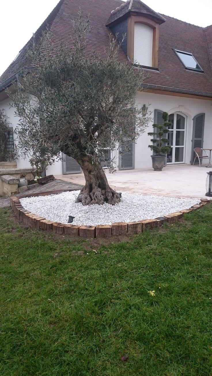 Modele De Parterre En Cailloux Modele De Jardin Avec Galets