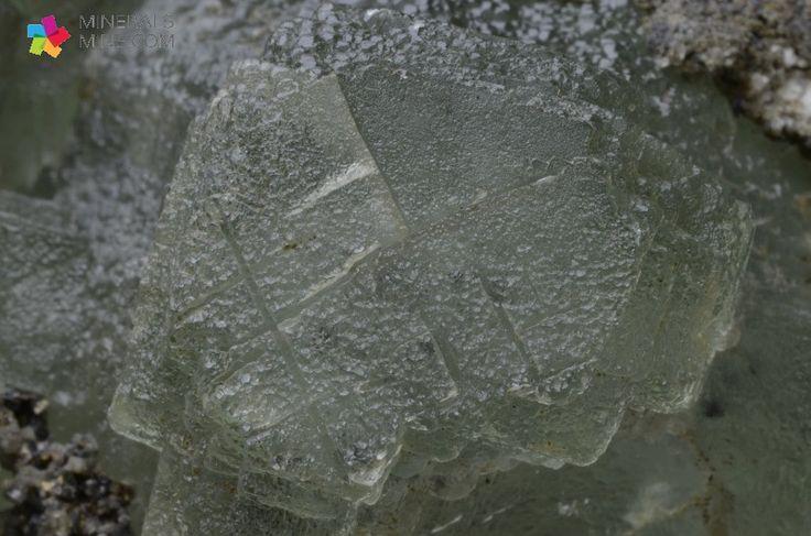 Fluoryt-ładna zielona szczotka