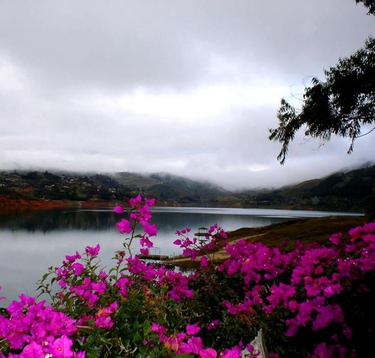 Lago Calima, Valle, Colombia