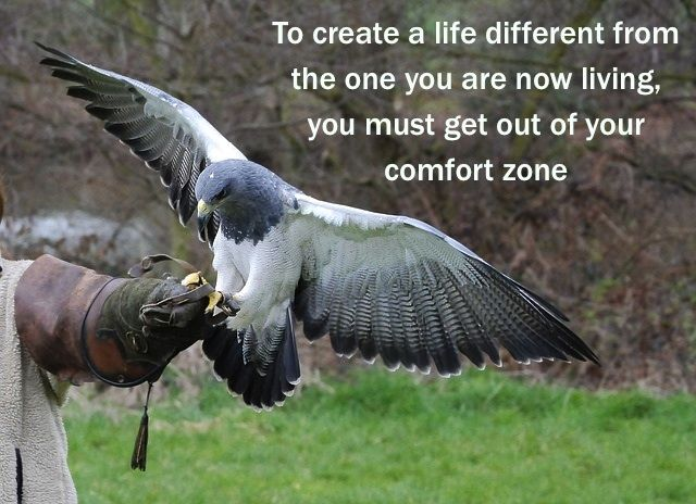 Getting out of our comfort zone...