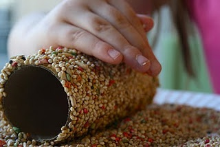 Toilet roll, cover it in peanut butter, roll it in bird seed. Then hook it over a branch in your garden.