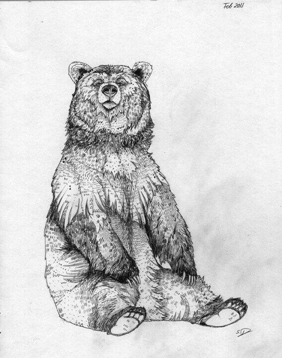 тут отметили, картинка медведя карандашом на рабочий хотя
