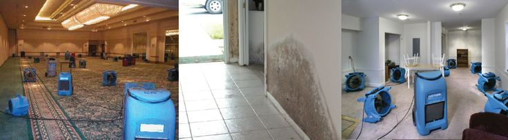 Winkelman provide free estimates along with 24/7 emergency cleaning services. Winkelman has highly trained technicians who provide you the best services. Go here: http://winkelmaninc.com