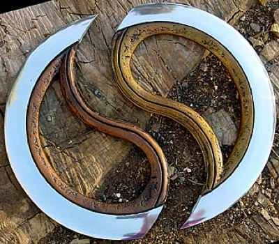 The desert warrior and steppe riders of Amarra both favor these weapons that can be thrown whole or split and used in close melee.   (Chakram from India. It is a throwing weapon that can be split in half or be used a full circle.)