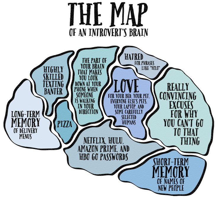 The brain of an introvert.