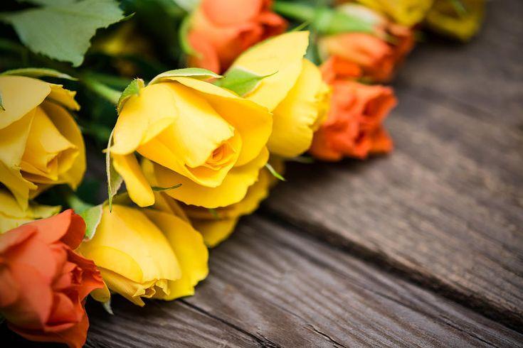 Yellow And Orange Small Roses  Photograph by Nadezhda Tikhaia #NadezhdaTikhaiaFineArtPhotography #ArtForHome #HomeDecor #Flowers #Roses #Yellow #InteriorDesign #FineArtPrints