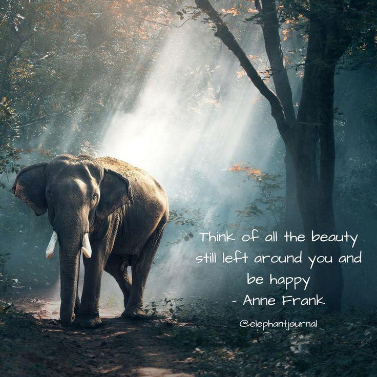 Be Happy. @elephantjournal.
