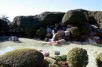 The Sanderling Resort & Spa - Duck, NC