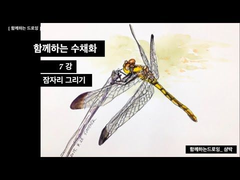 함께하는 수채화 기초 _ 기초 7강 _ 잠자리 그리기 (가벼운 채색 ) _ 샴박 - YouTube