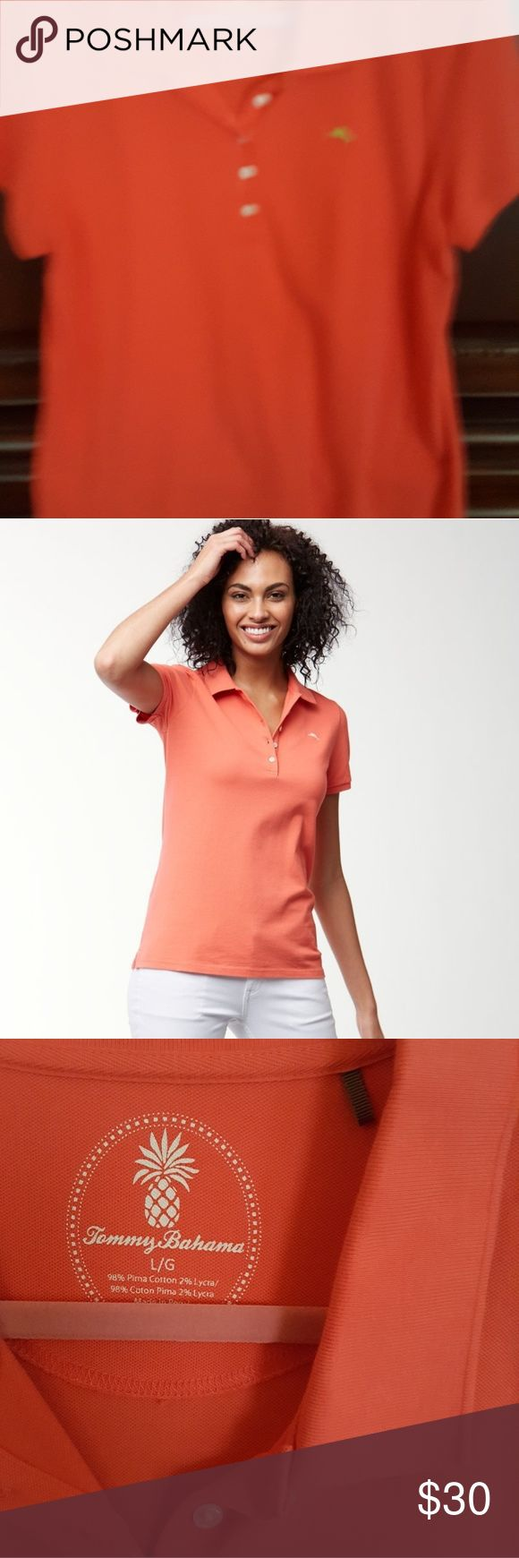 CLEARANCE ITEMTommy Bahama ladies polo ☄FINAL PRICE DROP ☄  (was $20.00 on sale listing and $68 when purchased new retail from Tommy Bahama.)  Size Large, EUC-worn 2x only Tommy Bahama Tops