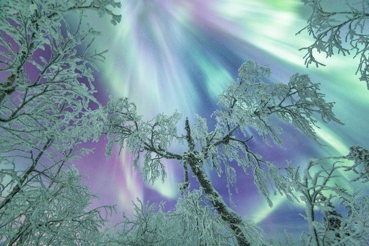 10+ Gründe, warum Lappland der magischste Ort ist, um Weihnachten zu feiern   – Y en algún lugar…