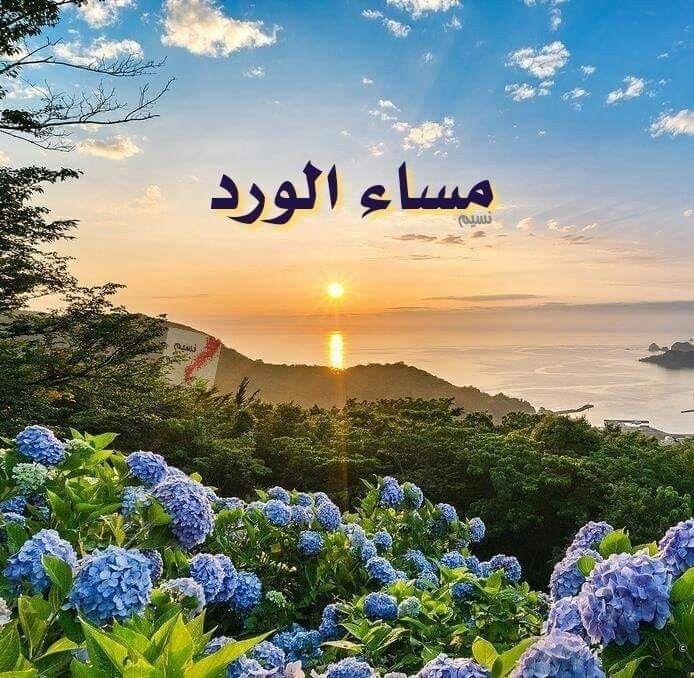 عند الغروب من شمس المدن المكللة بالياسمين تمر حكايات القلوب مكتوبة نهاياتها بقلم الأماني ومداد ال Love In Islam Good Evening Romantic Love Quotes