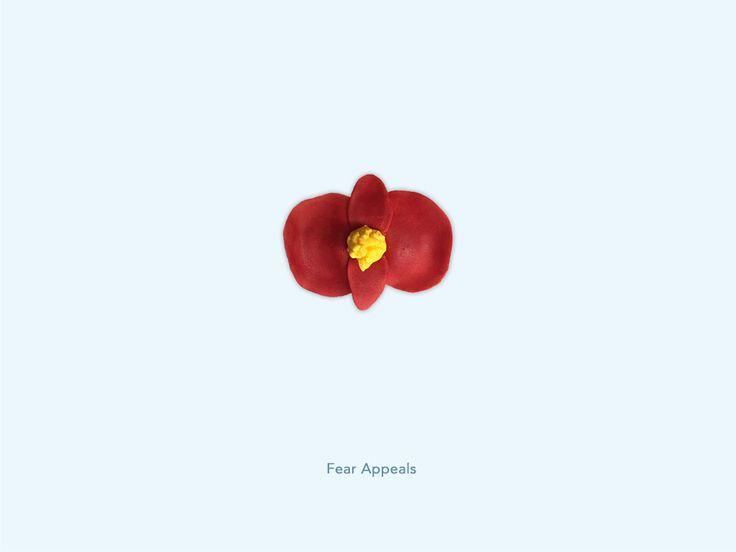 Fear Appeals - Begonia
