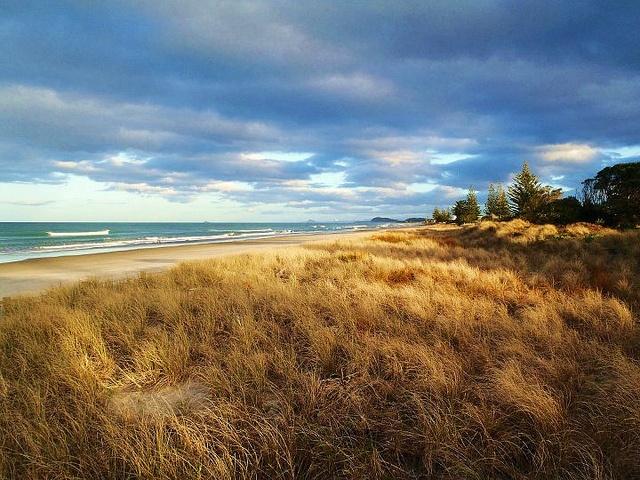 Waihi Beach in the Bay of Plenty, New Zealand.    Photo courtesy of Dr. Jen Corliss.