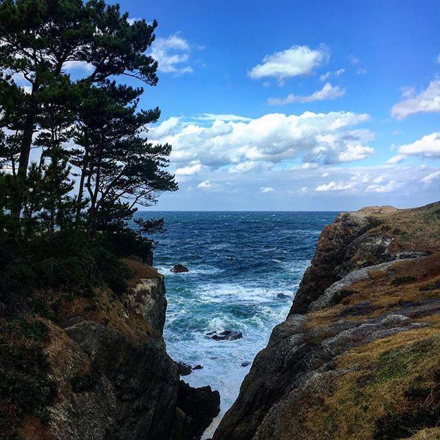 【kiiiiiiii08】さんのInstagramをピンしています。 《時代劇に出てくるみたいな場所😁  #カコソラ #空 #雲 #海 #日本海 #風景 #松 #木 #岩 #青空 #sky #skylovers #clouds #bluesky #nature #自然 #rock #nofilter #wood #trip #tree #sea #ocean #scenery #japan #view #beautiful #加工なし #shimane #日御碕灯台》