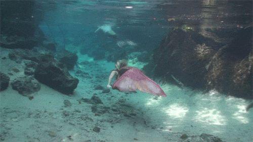 Tá sentada? Porque drone pode ter filmado sereias nadando em pleno alto mar! OMG!!! - Você - CAPRICHO