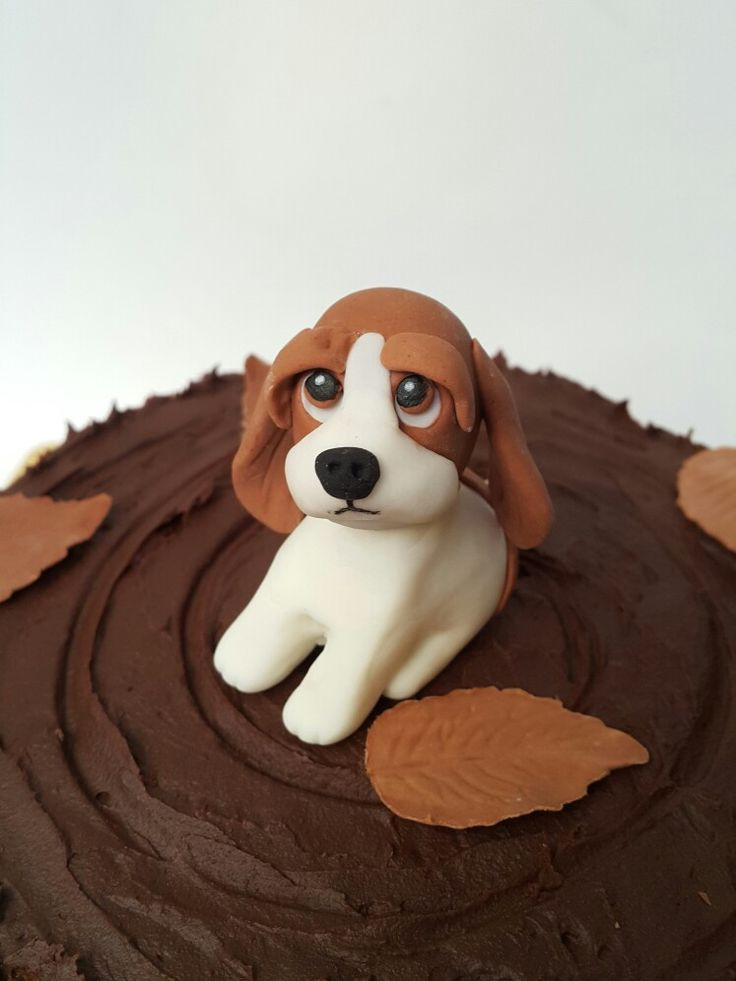 Beagle fondant / dog fondant   Dog cake topper, Dog cakes