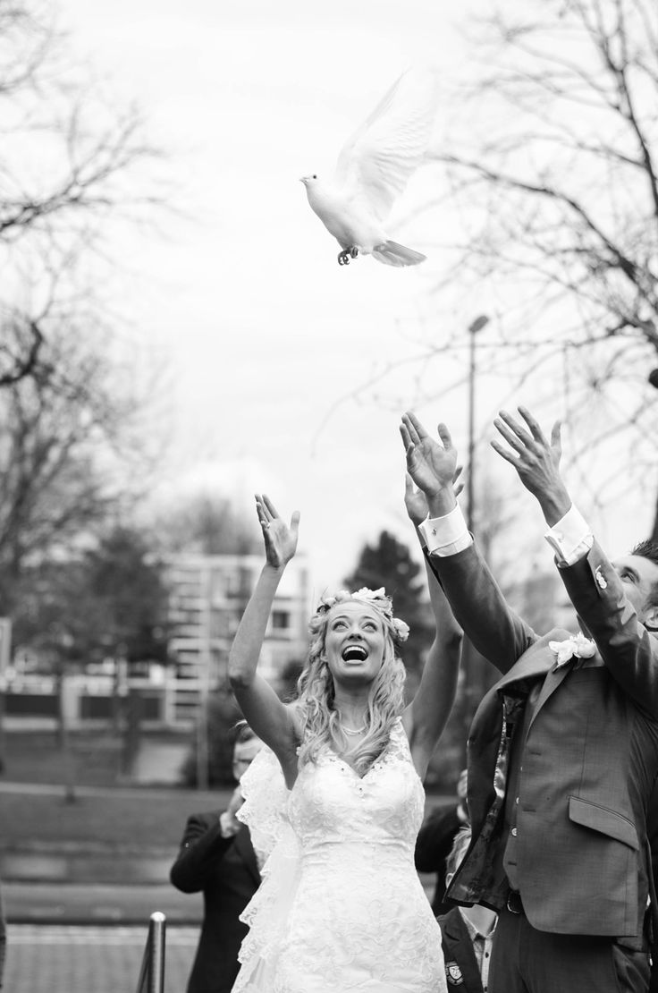 dove, duif, throwing, gooien, duiven, wedding, bruiloft