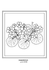 Záružlie - jarné kvietky ✳viac obrázkov nástenka https://sk.pinterest.com/kkuneov/prv/