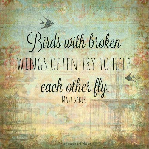 Flying Quotes: 25+ Best Ideas About Fly Quotes On Pinterest