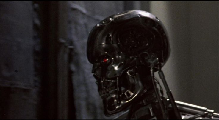 'terminator 5' Once Again All The Original Cast? Agarrens!
