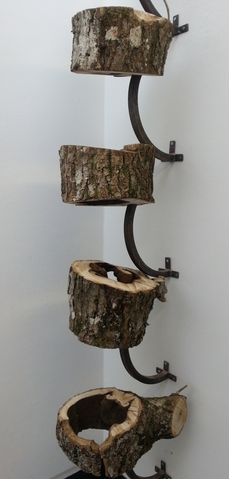 Tom Colquhoun's reconstruction of a hollow ash tree brings a geometry to Dieback http://www.dundee.ac.uk/djcad/degreeshow/workondisplay/fineart/tomcolquhoun/