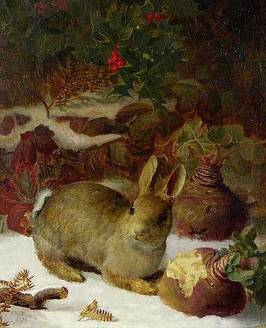 rabbit and turnips