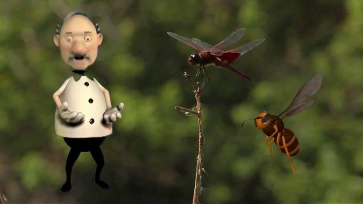 Ο Κόσμος Των ζώων - Τα Έντομα (The Insects)