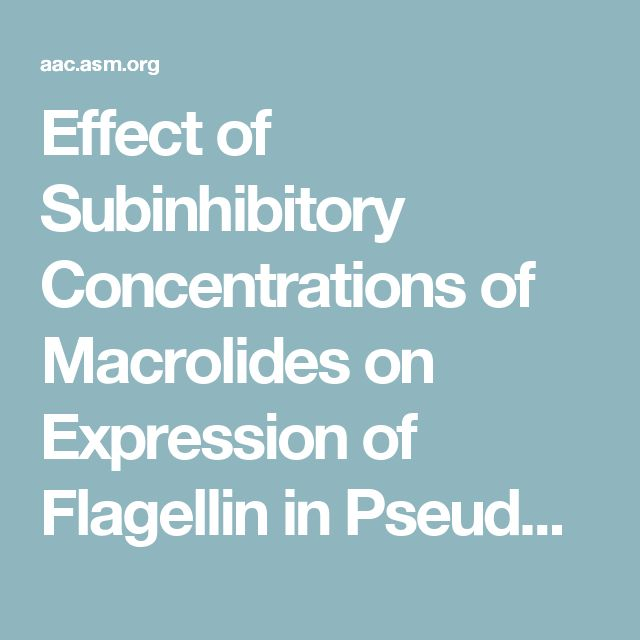 Effect of Subinhibitory Concentrations of Macrolides on Expression of Flagellin in Pseudomonas aeruginosa and Proteus mirabilis